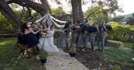 bluebird_hill_oct_wedding